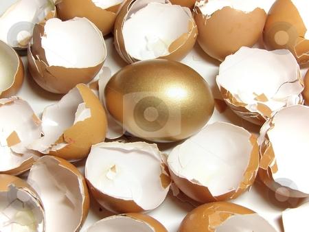 Gold and eggshell stock photo, Golden egg among eggshell by Sergej Razvodovskij
