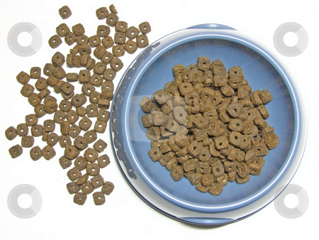 Cat foot stock photo, Cat food in and near the pet's bowl by Sergej Razvodovskij