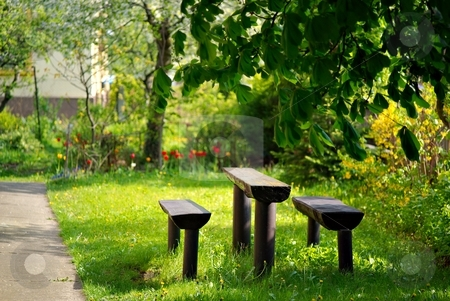In sunny garden stock photo, Wooden table and seat in a city garden by Juraj Kovacik