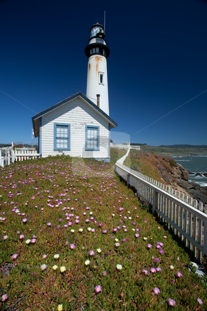 Pigeon Point Lighthouse stock photo, Pigeon Point Light Station or Pigeon Point Lighthouse is a lighthouse built in 1871 to guide ships on the Pacific coast of California. It is one of the tallest lighthouses in the United States. by Mariusz Jurgielewicz