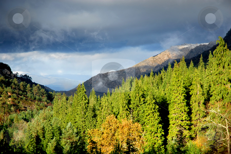 Autumn stock photo, Autumn at Geres, the portuguese national park by Rui Vale de Sousa