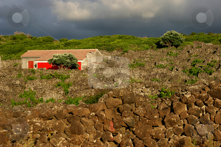 Old stock photo, Azores old farm house in s miguel island by Rui Vale de Sousa