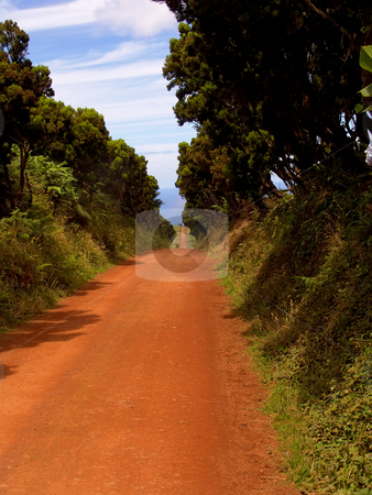 Red road stock photo, Big red road in sao jorge island, azores by Rui Vale de Sousa