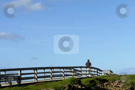 Walking stock photo, Man walking in the wood path at the coast by Rui Vale de Sousa