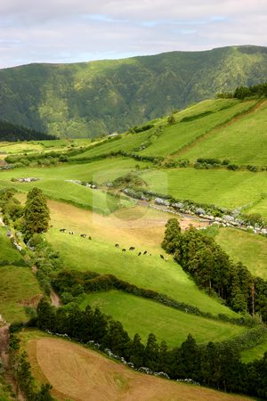 Fields stock photo, Azores fields from above by Rui Vale de Sousa