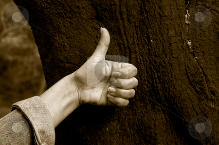 Hand stock photo, Thumbs up by Rui Vale de Sousa