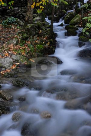 River stock photo, Small river in the portuguese national park by Rui Vale de Sousa