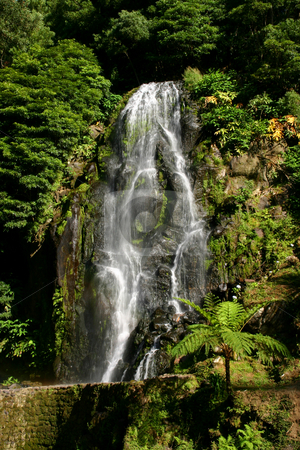 Waterfall stock photo, Big waterfall among green plants in azores, portugal by Rui Vale de Sousa