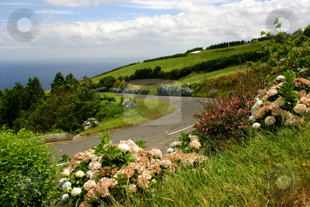 Azores stock photo, Azores coastal landscape in the island of s miguel by Rui Vale de Sousa