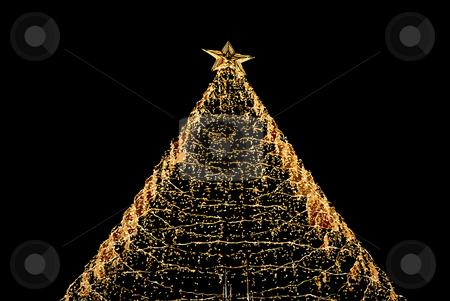Tree stock photo, Christmas tree lights in the dark night by Rui Vale de Sousa