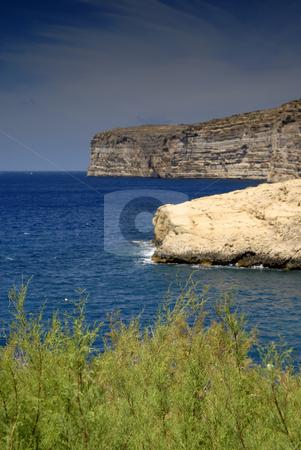 Coast stock photo, Malta island coastal view at Gozo island, focus on the plants by Rui Vale de Sousa
