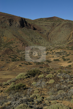 Land stock photo, Tenerife dry land by Rui Vale de Sousa
