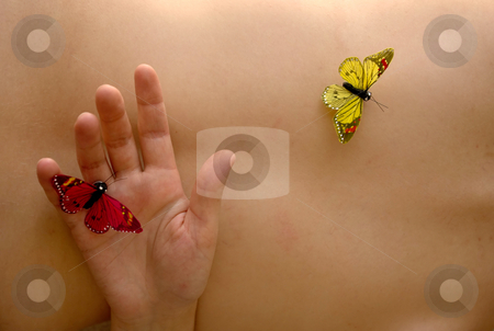 Butterflys stock photo, Fake butterflys in woman naked skin detail by Rui Vale de Sousa