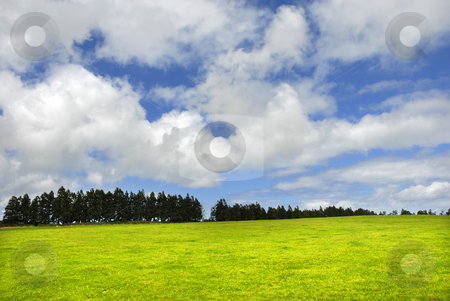 Fields stock photo, Azores green fields at s miguel island by Rui Vale de Sousa