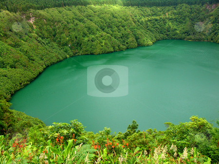 Lake stock photo, Green lake by Rui Vale de Sousa