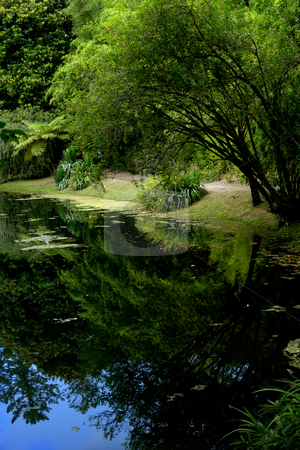 Small lake stock photo, Small lake in azores at the national park by Rui Vale de Sousa