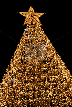 Christmas stock photo, Computer generated orange christmas tree in the night by Rui Vale de Sousa