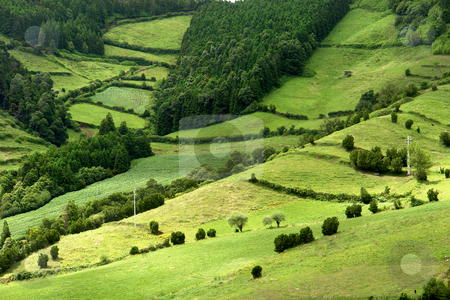 Azores stock photo, Azores natural landscape in s miguel island by Rui Vale de Sousa