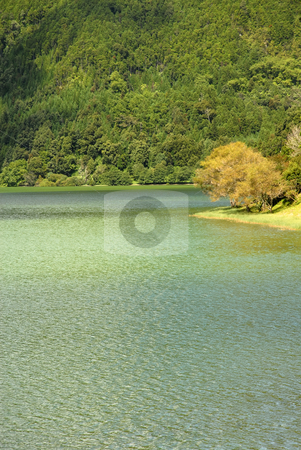 Green lake stock photo, Azores green lake at s miguel island by Rui Vale de Sousa