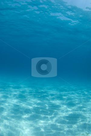 Tiger Beach Rippled Seascape stock photo, Background image of the rippled sand on the ocean floor at Tiger Beach by A Cotton Photo