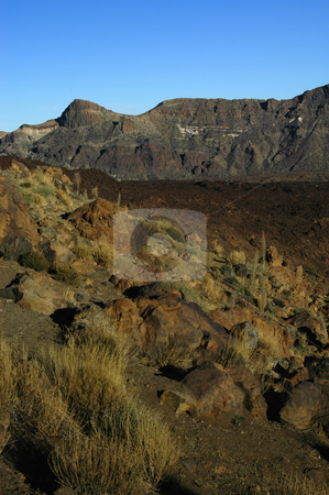 Arid stock photo, Tenerife's el teide mountain in canary islands by Rui Vale de Sousa