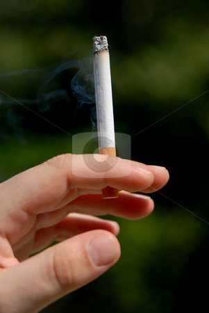 Smoke stock photo, Man hand with a cigarette among green vegetation by Rui Vale de Sousa