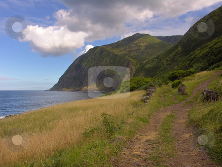 Road stock photo, Azores coast road by Rui Vale de Sousa