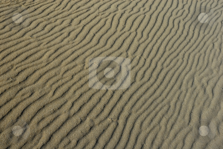 Desert stock photo, Close up of sand ripples on the desert for background by Rui Vale de Sousa