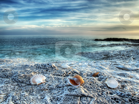 Adriatic sea stock photo, View of the untouched beach somewhere on the Adriatic coast. by Sinisa Botas