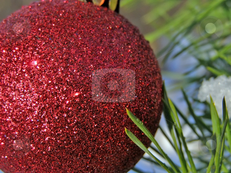 Red Christmas ball stock photo, Decoration ball on the christmas tree outdoor by Sergej Razvodovskij