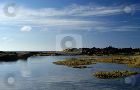 Coast stock photo, Azores coast details by Rui Vale de Sousa