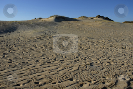 Sahara stock photo, Desert sahara sand and the blue sky by Rui Vale de Sousa