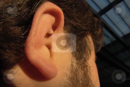 Ear stock photo, Man body part by Rui Vale de Sousa