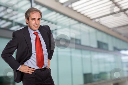 Standing stock photo, Mature business man portrait in a office building by Rui Vale de Sousa