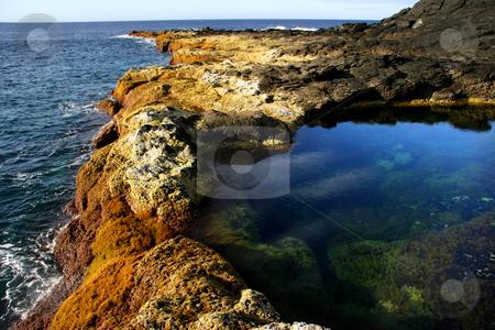 Calm waters stock photo, Azores coast by Rui Vale de Sousa