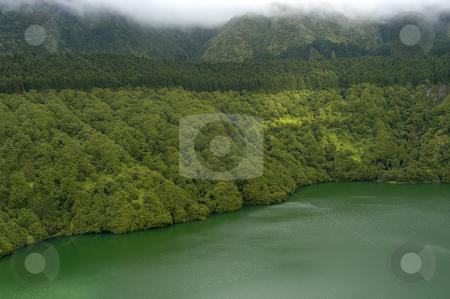 Lake stock photo, Azores lake detail by Rui Vale de Sousa