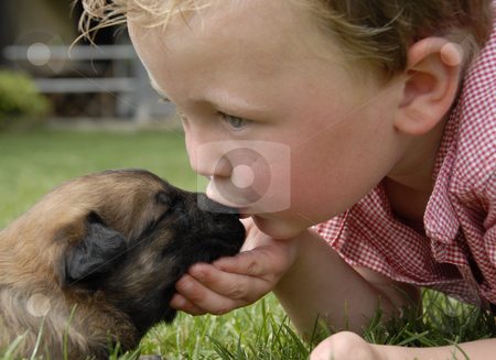 Kissing baby stock photo, Little boy kissing his very young puppy purebred belgian shepherd malinois by Bonzami Emmanuelle