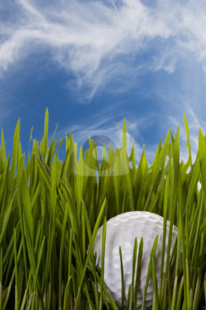 Lost ball stock photo, A golf ball caught in the rough by Steve Mcsweeny