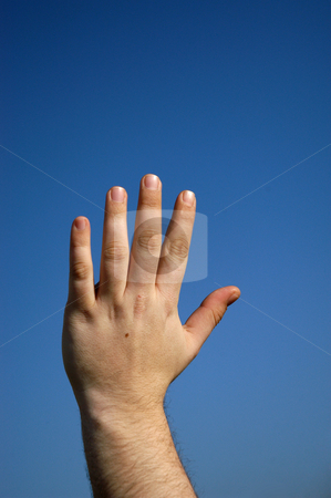 Hand stock photo, Male hand and the blue sky as background by Rui Vale de Sousa