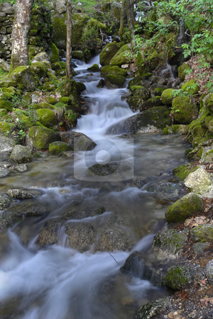 Run stock photo, River waterfall by Rui Vale de Sousa