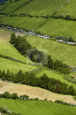 Fields stock photo, Azores fileds by Rui Vale de Sousa