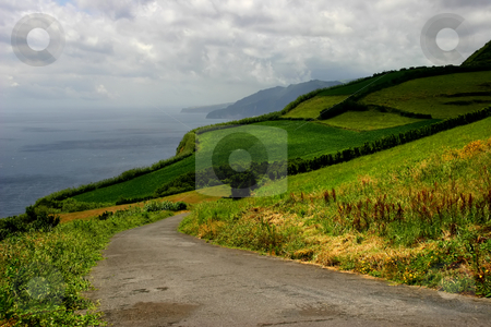 Coast stock photo, Road on the azores coast by Rui Vale de Sousa