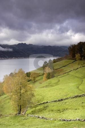 Scenery stock photo, Autumn landscape in the north of portugal by Rui Vale de Sousa