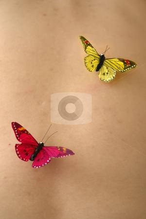 Butterflys stock photo, Butterflys in woman skin by Rui Vale de Sousa