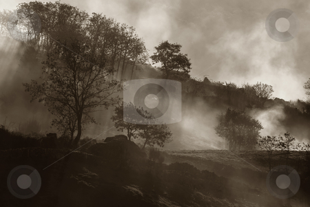 Smoke stock photo, Fog and smoke in the portuguese national park by Rui Vale de Sousa