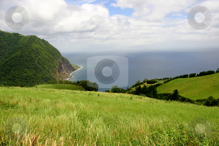 Coast stock photo, Fields at the coast of azores by Rui Vale de Sousa