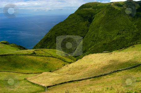 Fields stock photo, Fields on the azores coast, island of S. Miguel by Rui Vale de Sousa