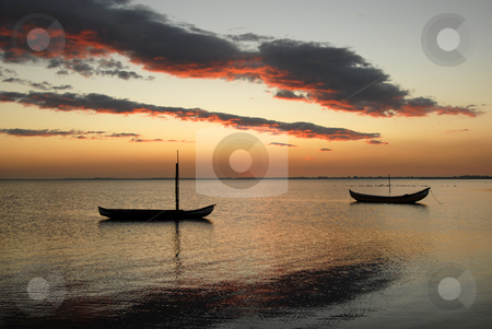Moliceiros stock photo, Small moliceiro portuguese boats on the sunset by Rui Vale de Sousa