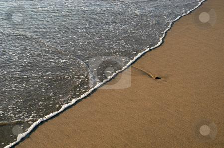 Beach stock photo, Wave on the beach by Rui Vale de Sousa