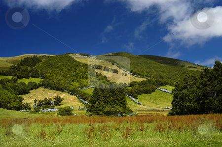 Hill stock photo, Azores landscape by Rui Vale de Sousa